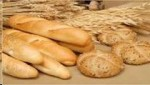 Make Great DOUGH with This $125k Italian and Artisan Bread Route