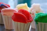 Franchise – Established – Italian Ice Store